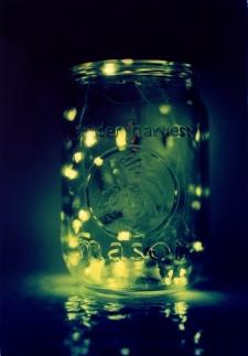 fireflies-mason